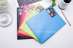 Two Pockets File Folder, Colorful File Bag pictures & photos
