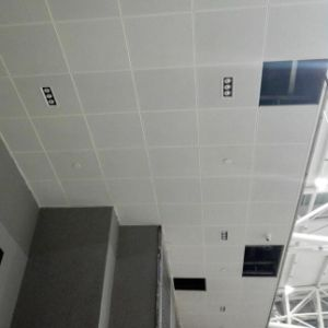 Clip-in Tile System Aluminum False Ceiling with Factory Price pictures & photos