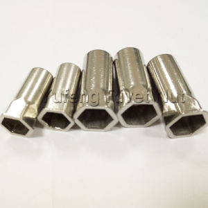 Stainless Steel Small Head Inside & Outside Hexagon Rivet Nut with Closed End pictures & photos
