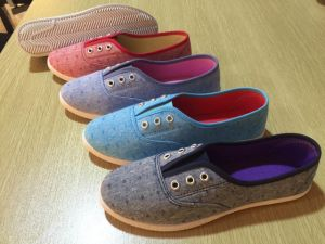 2017 Fashion Casual Walking Shoes for Women & Canvas Shoes pictures & photos
