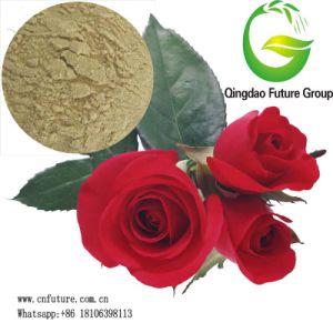 Plant Source & Animal Source Amino Acid Fertilizer pictures & photos