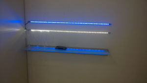Sensor LED Shelf Light with DC12V Driver pictures & photos