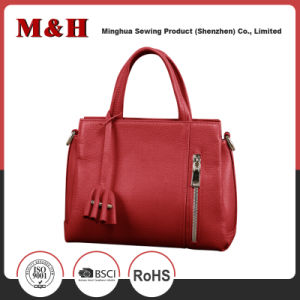 Exquisite Various Color Zipper Branded Women Designer Handbag pictures & photos