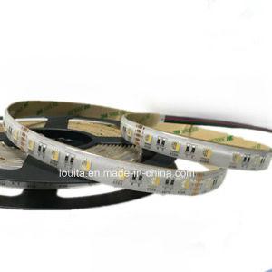 Flexible Warm White 60LEDs/M SMD5050 RGBW LED Strip Light pictures & photos