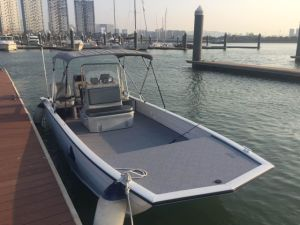 Beautiful Aluminium Fishing Boat OVS9-20 pictures & photos