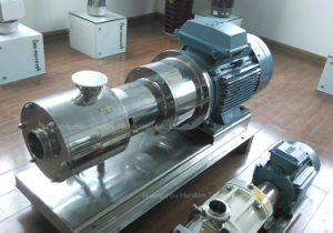 High Quality Horizontal Homogenizer Emulsion Pump pictures & photos