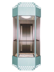 Optional Sightseeing Elevator with Hairline Stainless Steel Door pictures & photos