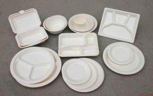 Sugarcane Pulp Plate Bagasse Pulp Plate Tableware Cups Lunchbox