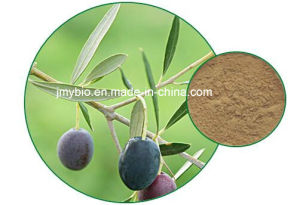 20%~60% Oleuropein Olive Leaf Extract, 100% Natural pictures & photos