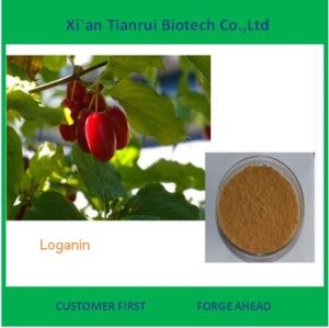7% Loganin Powder High Quality Fructus Corni Extract pictures & photos