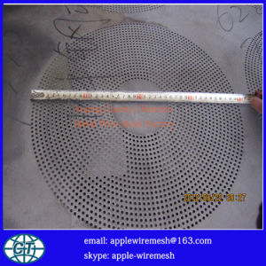 Stainless Steel Perforated Metal pictures & photos