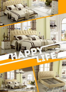 The Modern Style Bedding Set (A559) pictures & photos