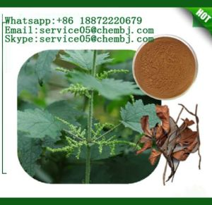 Top Quality and Moderate Price CAS 83-46-5 Beta-Sitosterol pictures & photos