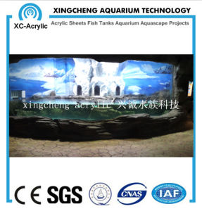 Customized Aquarium Project Acrylic Material Fish Globe Price pictures & photos
