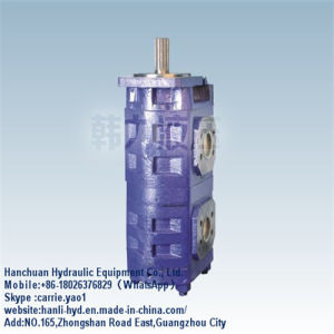 (CBGJ2063/2063) Japan Hydraulic Gear Pump with Flat Key