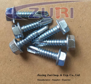 """Hexagon Washer/Flange Head Drilling Screws M6.3*19  #14*3/4"""" pictures & photos"""