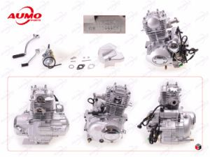 50cc Engine Assy Vertical 50cc Motorcycle Parts pictures & photos