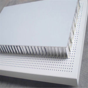 Aluminium Honeycomb Panel Ahp for Slae (HR941)
