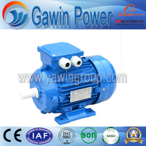 1HP Y2 Series Iron Cast Three-Phase Electric Motor pictures & photos