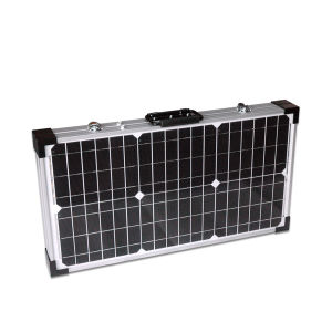 Competitive Price 60W Mono Solar Panel for Sale From China (SGM-F-2*30W) pictures & photos