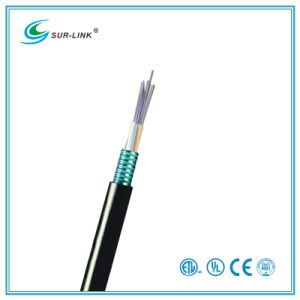 Black 6 Fibers Stranded Loose Tube Light-Armored Fiber Cable pictures & photos
