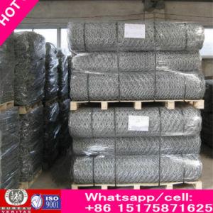Slope Protective Gabion Mesh, Hexagonal Gabion Mesh, PVC Coated Gabion Wire Mesh pictures & photos