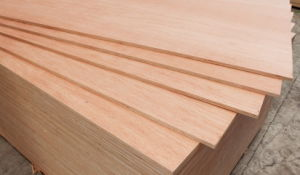 Commercial Plywood BB/CC Grade pictures & photos
