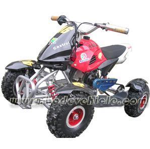 ATV, Quad (MC-301C) pictures & photos