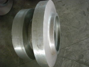 Forging Valve/Forged Valve pictures & photos