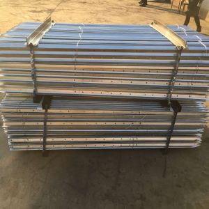 Hot Dipped Galvanized Star Picket pictures & photos