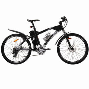 Mountain Style E Bike (HJ-M04)