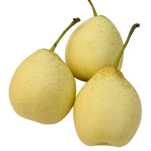 New Crop Good Quality Fresh Ya Pear pictures & photos