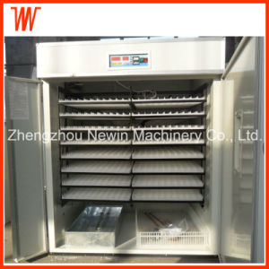 Cheap Small Poultry Egg Incubator for Sale pictures & photos