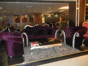 Newest Design Noble Hotel Lobby Sofa/Living Room Room Sofa (A11014)