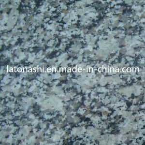 Discount White Tiger Skin Granite Tile for Flooring, Wall, Paving pictures & photos