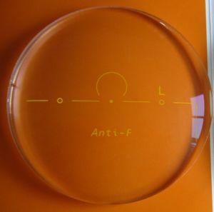Free Form Progressive Polycarbonate Minus Lenses