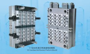 PET Preform Mold
