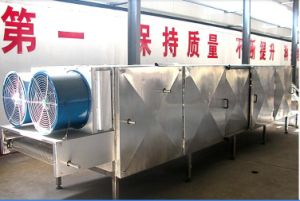 Commercial Drying Vegetable and Fruit Washer