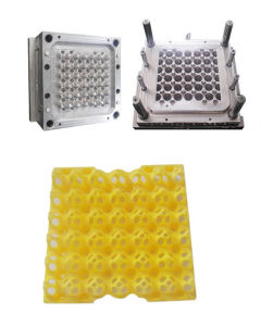 Plastic Egg Tray Mould pictures & photos