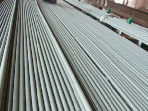 Duplex Stainless Steel Seamless Tube ASTM A789 S32750, Duplex Uns S32750 1.4410 Stainless Steel Tube pictures & photos
