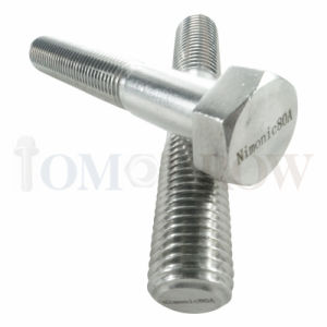 Hot Selling High Quality Exotic Alloy Nimonic 80A Hex Bolt/ Hex Nut/ Allen Bolt/ Stud/ Plain Washer pictures & photos