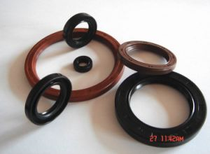 Best Silicon Viton NBR Rubber Oil Car Seal pictures & photos