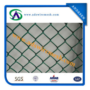 50*50 100*100mesh Chain Link Fence (ISO9001) pictures & photos
