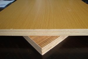 Commercial Plywood Birch Plywood for Building Material pictures & photos