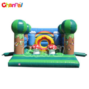 Magic Forest Inflatable Bouncer/Kids Air Jumpers for Sale Bb079 pictures & photos