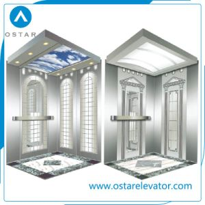 630kg 1: 1 Roping Passenger Elevator Cabin with Factory Price (OS41) pictures & photos