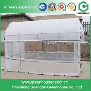 Arch Roof Type Tunnel Greenhouse Backyard Small Greenhouse Kits pictures & photos