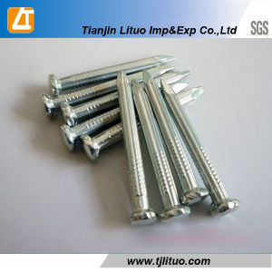 C45 Steel White Galvanized Concrete Nails pictures & photos