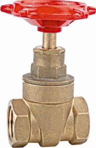 Thread End Brass Gate Valve (TP-6001) pictures & photos
