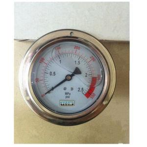 Y100 Oil Filled Pressure Gauge with Border